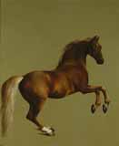 [Stubbs - Whistlejacket]